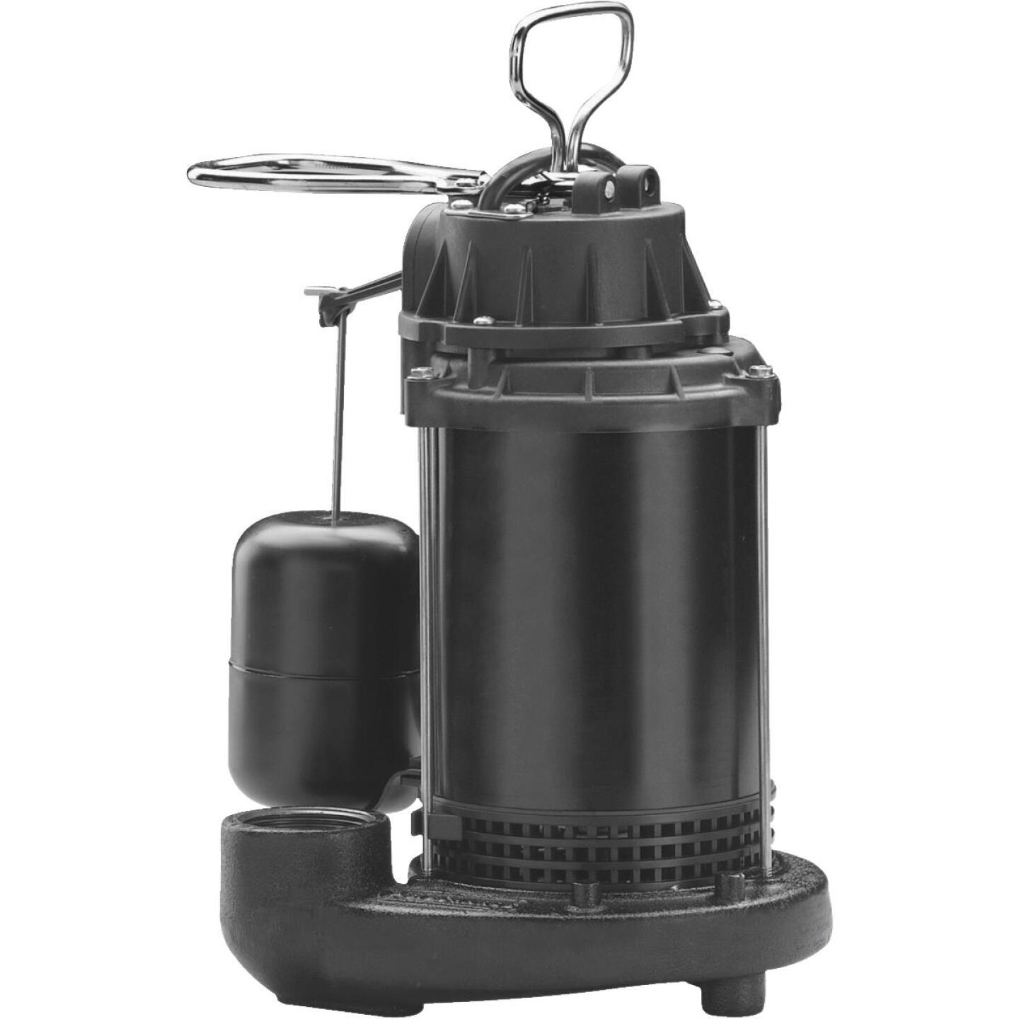 Wayne Water System 1/3 HP 115V Cast-Iron Submersible Sump Pump Image 1