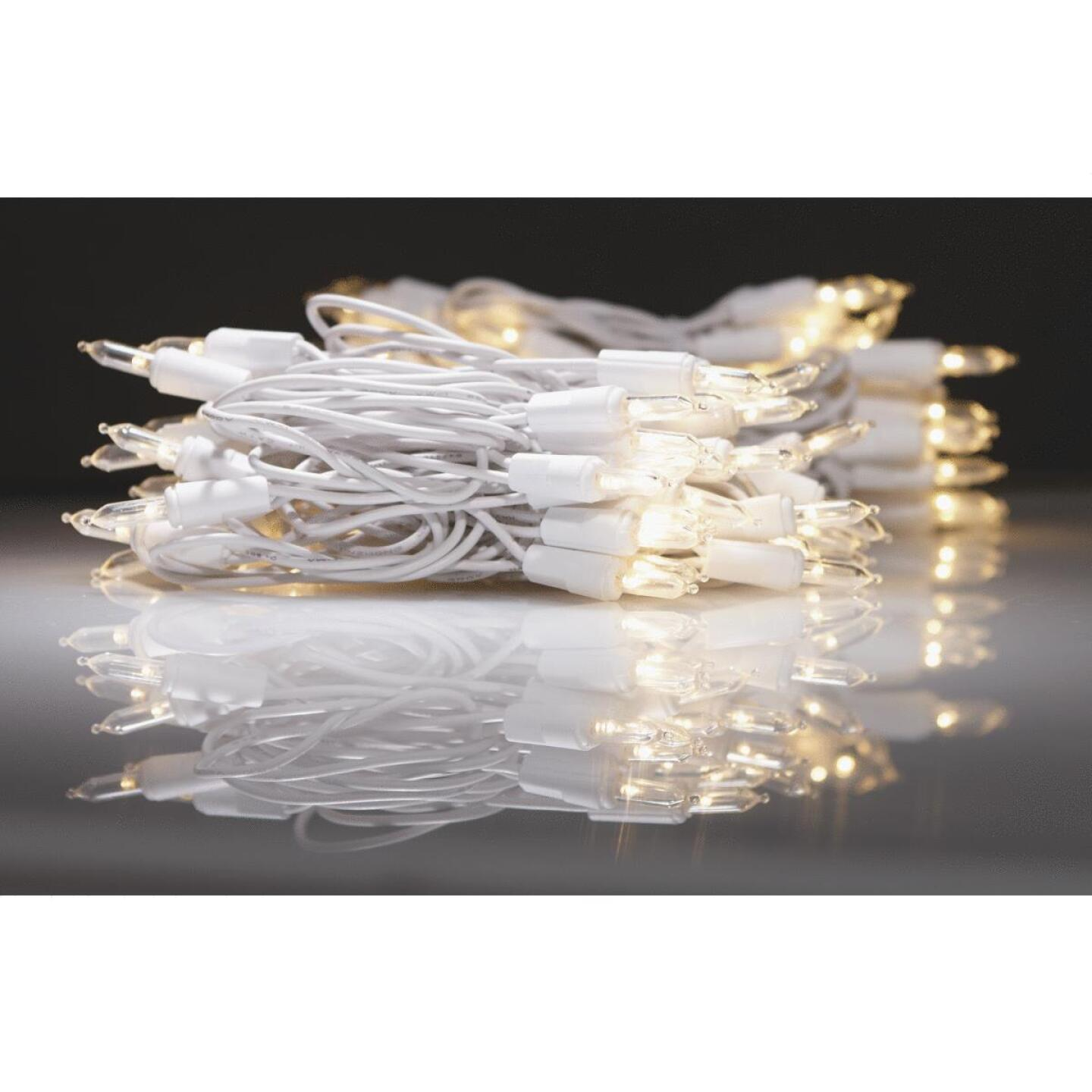 J Hofert White 100-Bulb Italian Style LED Light Set with White Wire Image 2